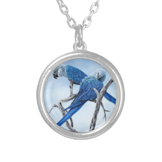 Spix macaw. The blue Parrot of the film Rio. Silver Plated Necklace