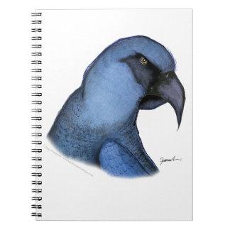spixs macaw, tony fernandes notebooks