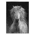 Splash Horse Greeting Card