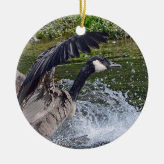 Splashy Landing Canada Goose Christmas Ornament