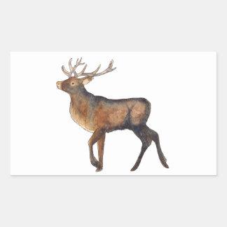 Splendid stag rectangular sticker