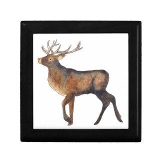 Splendid stag small square gift box