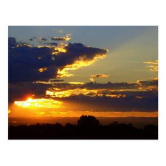 Splendor Postcard