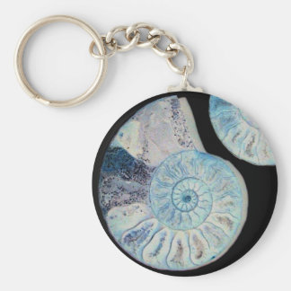 Split Ammonite Keyring Basic Round Button Key Ring