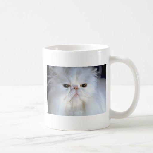 Spoiled Rotten Coffee Mugs