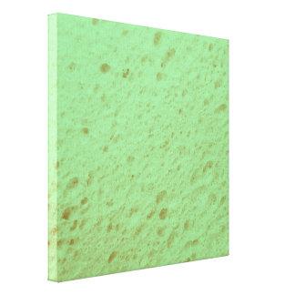 sponge,aqua stretched canvas print