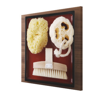 Sponge, loofah, brush on red tray canvas print