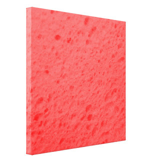 sponge,pink gallery wrapped canvas