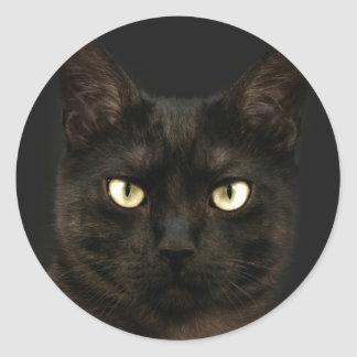 Spooky black cat round sticker