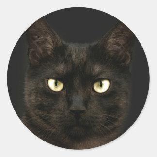 Spooky black cat round sticker