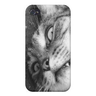 Spooky cat iPhone 4/4S case