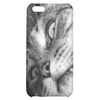 Spooky cat iPhone 5C case