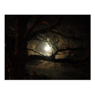 Spooky Light Postcard