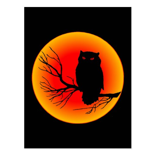 Spooky Owl Post Card