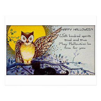 Spooky Owl Vintage Halloween Postcard