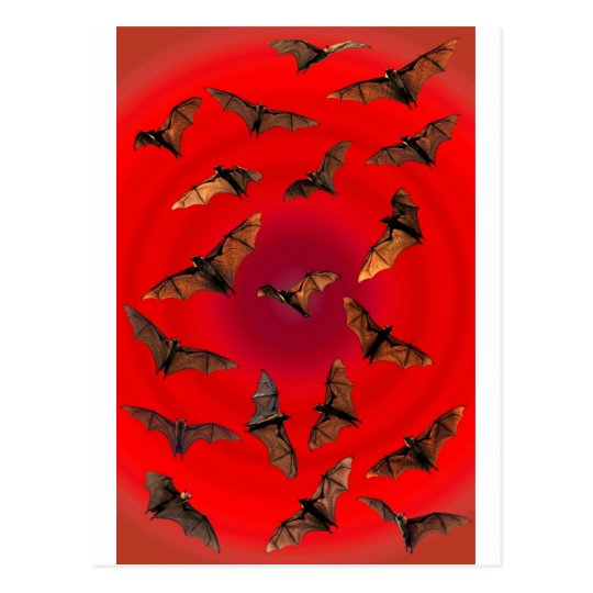 Spooky red Halloween Fruit Bats (Flying foxes) Postcard