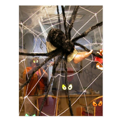 Spooky Spider Halloween Office Decorations Photo Post Card