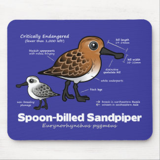 Spoon-billed Sandpiper Statistics Mouse Pad
