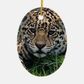 Spot Christmas Ornament