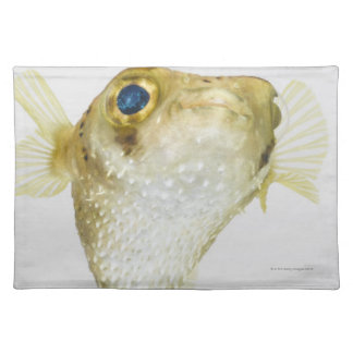 Spot-fin porcupinefish (Diodon hystrix) Placemat