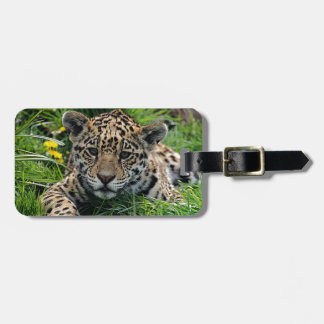 Spot Luggage Tag