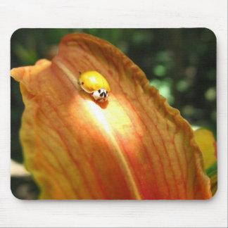 Spotlight - Mousepad