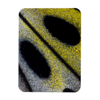 Spotted and yellow butterfly wing rectangular photo magnet