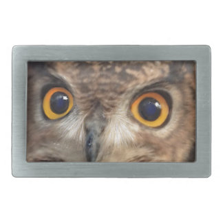 Spotted eagle-owl belt buckle