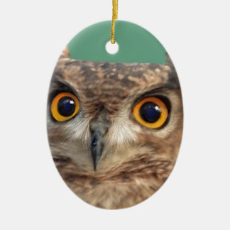 Spotted eagle-owl ceramic oval decoration