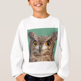 Spotted eagle-owl sweatshirt