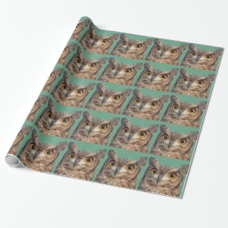 Spotted eagle-owl wrapping paper