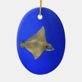 Spotted eagle ray swimming underwater Galapagos Christmas Ornament