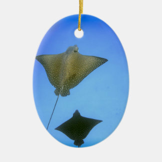Spotted eagle rays underwater Galapagos Islands Christmas Ornament