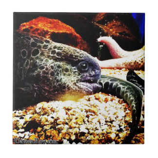 Spotted Eel Tile