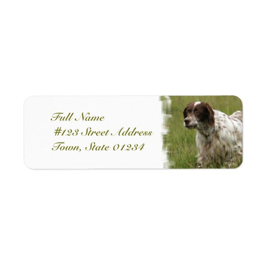Spotted English Setter Dog Mailing Labels