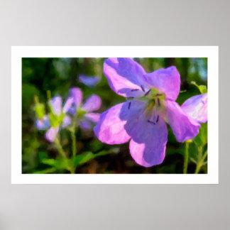 Spotted Geranium Faux Paint Flower Poster