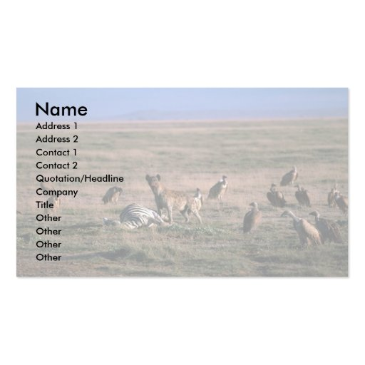 Spotted Hyaena - On Zebra Kill, With Vultures Business Card Template