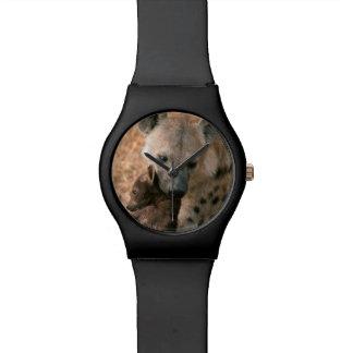 Spotted Hyena (Crocuta Crocuta) With Pup Watch