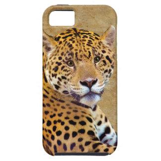 Spotted Jaguar Big Cat-lover #Gift iPhone 5 Cases
