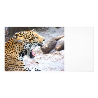 Spotted Jaguar painted image Customised Photo Card