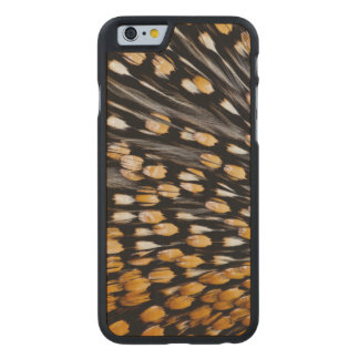 Spotted Jungle Fowl Feather Abstract Carved Maple iPhone 6 Case