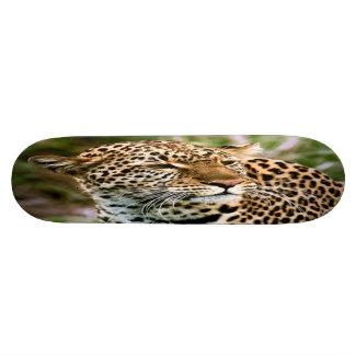 Spotted Leopard Skateboard