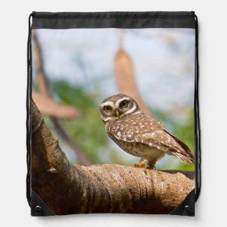 Spotted owl on morning flight. drawstring bag