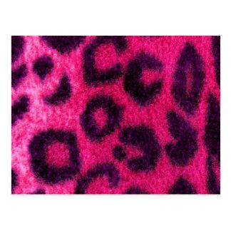 Spotted Pink Leopard Wild Cat Postcard