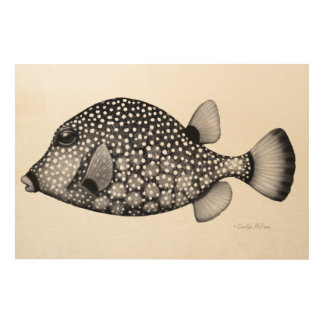 Spotted Smooth Trunkfish Wood Wall Art Wood Canvases