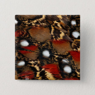 Spotted Tragopan Feather Abstract 15 Cm Square Badge
