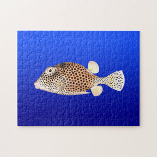 Spotted Trunkfish on Blue Background Jigsaw Puzzle