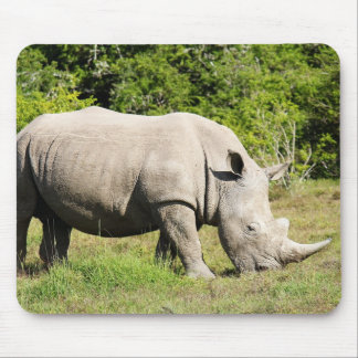 Spotting a Rhino feeding whilst on Safari Mouse Mat