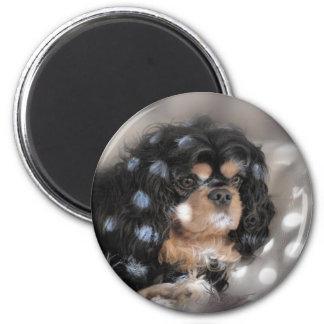 Spotty Cav? 6 Cm Round Magnet