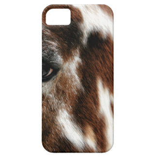 Spotty iPhone 5 Cases